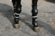 Police Horse Riot Protection - Front Leg Protectors