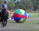 Tek's Police - Crowd Control Training Ball - Complete Set -  60