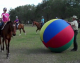 Tek's Police - Crowd Control Training Ball - Skin Only - 72