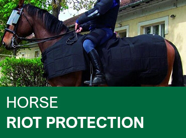 Horse Riot Protection